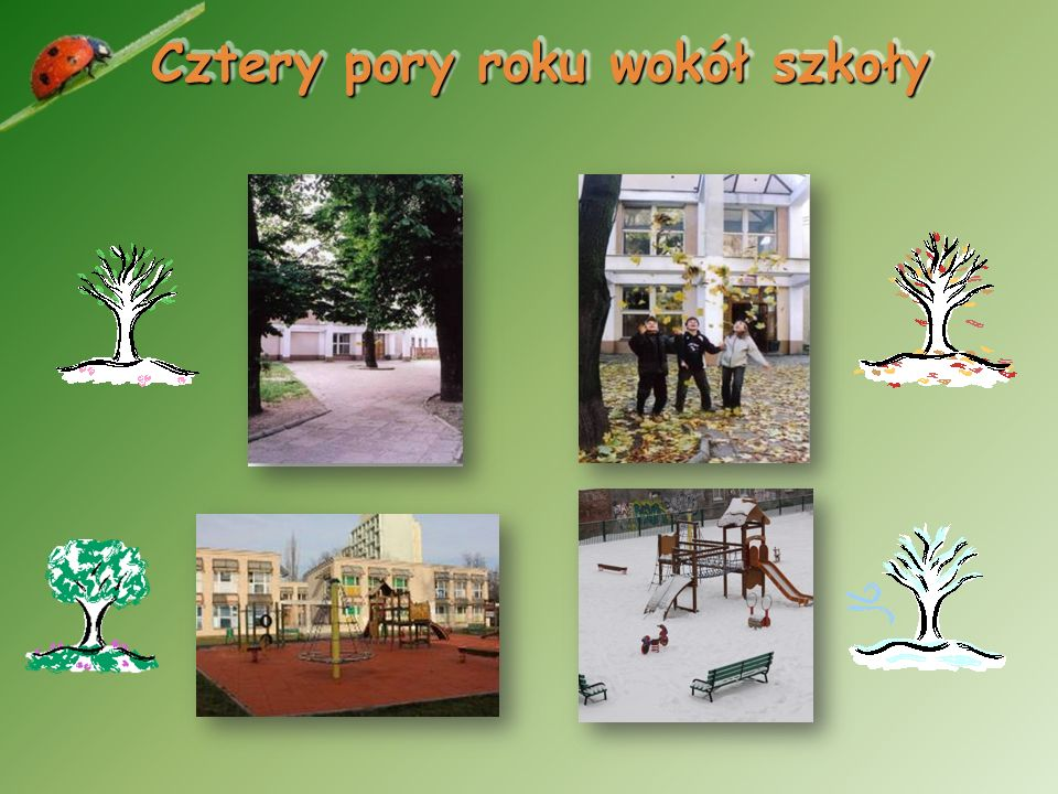 Jest to jedyna w Łodzi państwowa szkoła, w której uczą się tylko dzieci z klas I – III. Mamy duże, jasne klasy z łazienkami. Jest też miejsce do zabaw