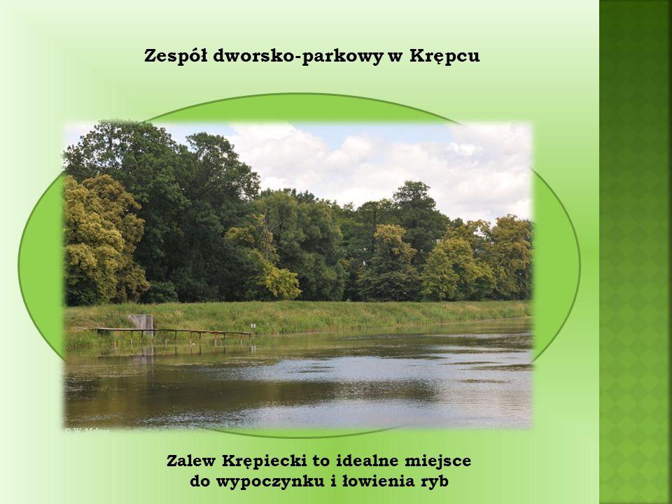 Zespół dworsko-parkowy w Krępcu Zalew Krępiecki to idealne miejsce do wypoczynku i łowienia ryb