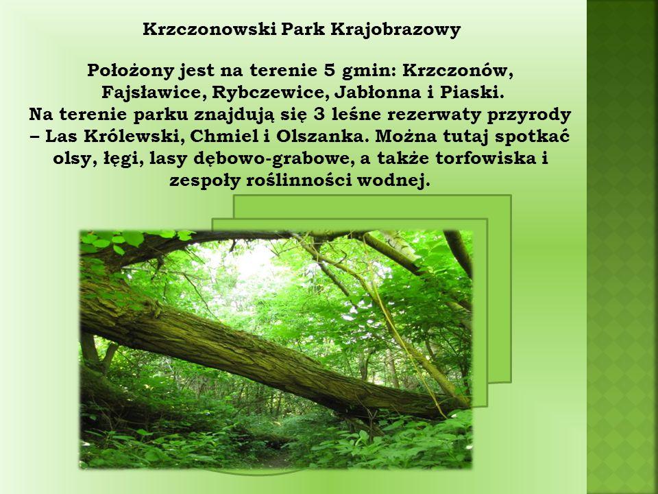 Krzczonowski Park Krajobrazowy Położony jest na terenie 5 gmin: Krzczonów, Fajsławice, Rybczewice, Jabłonna i Piaski.
