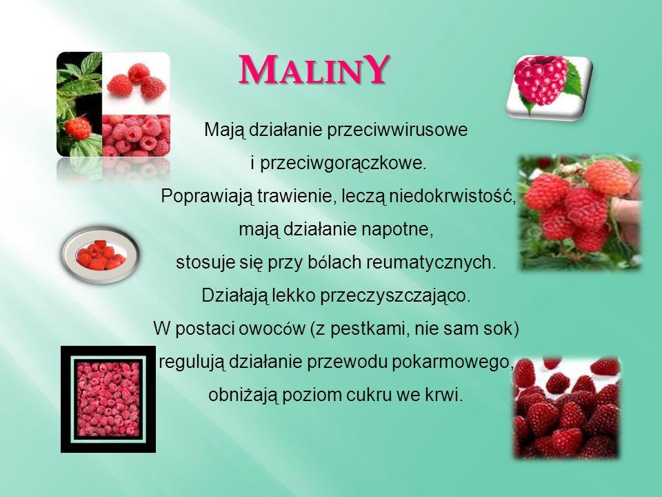 M ALIN Y Mają działanie przeciwwirusowe i przeciwgorączkowe. Poprawiają trawienie, leczą niedokrwistość, mają działanie napotne, stosuje się przy b ó