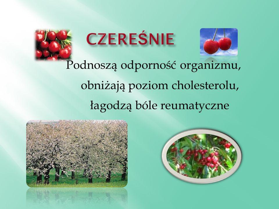 Podnoszą odporność organizmu, obniżają poziom cholesterolu, łagodzą bóle reumatyczne