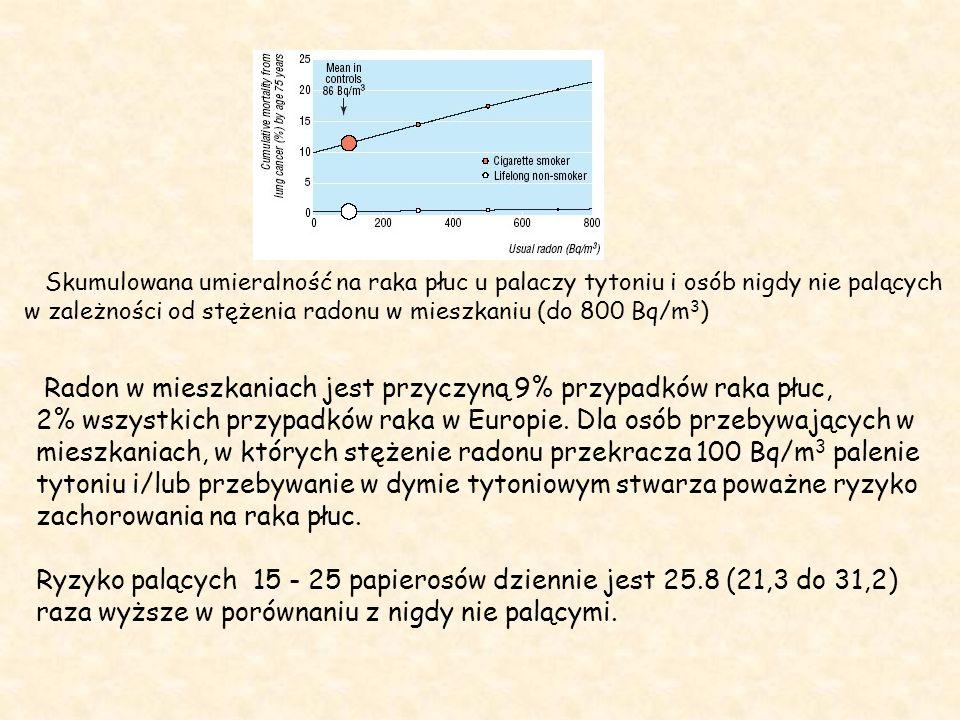 Skumulowana umieralność na raka płuc u palaczy tytoniu i osób nigdy nie palących w zależności od stężenia radonu w mieszkaniu (do 800 Bq/m 3 ) Radon w mieszkaniach jest przyczyną 9% przypadków raka płuc, 2% wszystkich przypadków raka w Europie.