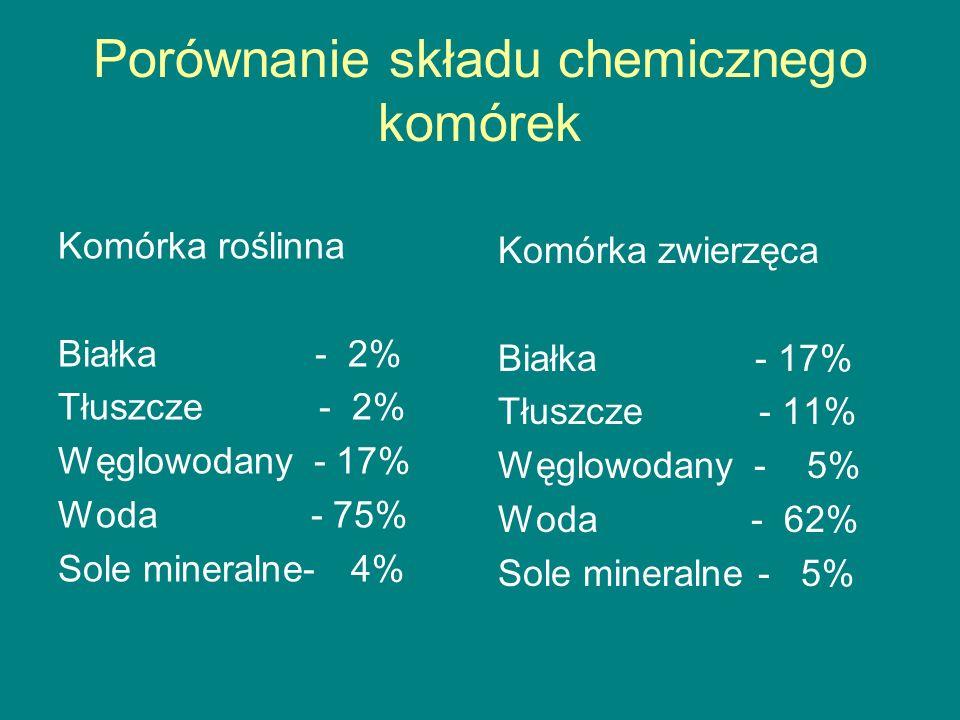 Porównanie składu chemicznego komórek Komórka roślinna Białka - 2% Tłuszcze - 2% Węglowodany - 17% Woda - 75% Sole mineralne- 4% Komórka zwierzęca Białka - 17% Tłuszcze - 11% Węglowodany - 5% Woda - 62% Sole mineralne - 5%