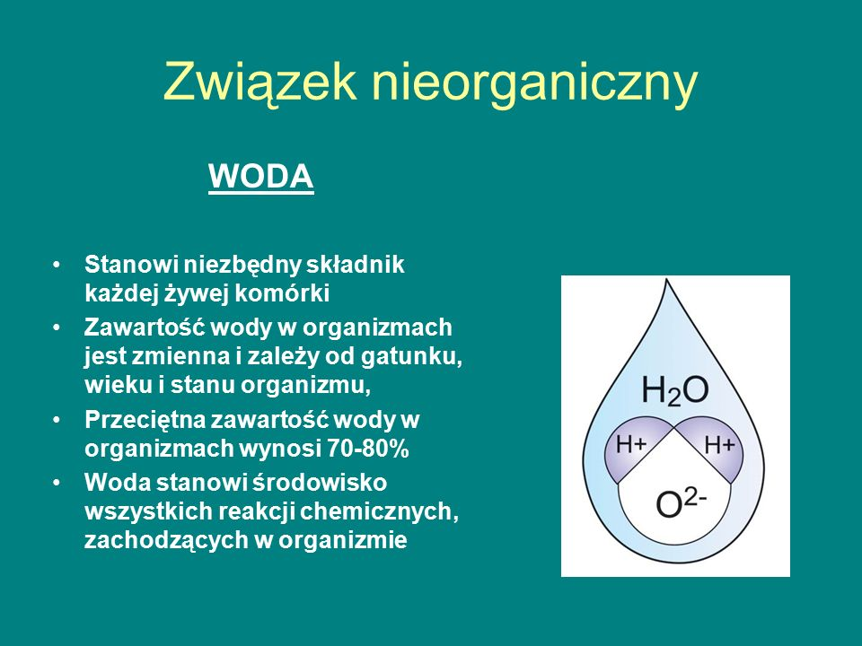 Procentowe porównanie zawartości wody w różnych tkankach, narządach, organizmach Meduza – 97% Dorosły człowiek – 60% Zarodek ludzki – 93% Noworodek – 75% Ślimak – 84% Glony – 85% Arbuz – 90% Grzyby 80% Nasiona 10-15% Zarodniki – 10% Krew – 90% Limfa – 95% Łzy -98% Kości – 20% Tkanka nerwowa – 88% Mięśnie – 75% Ściana komórkowa – 10% Szkliwo zęba – 10% Posegreguj te dane.