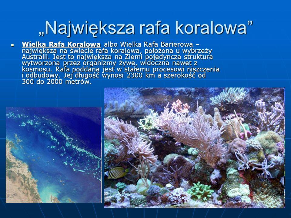 """""""Największa rafa koralowa"""" Wielka Rafa Koralowa albo Wielka Rafa Barierowa – największa na świecie rafa koralowa, położona u wybrzeży Australii. Jest"""