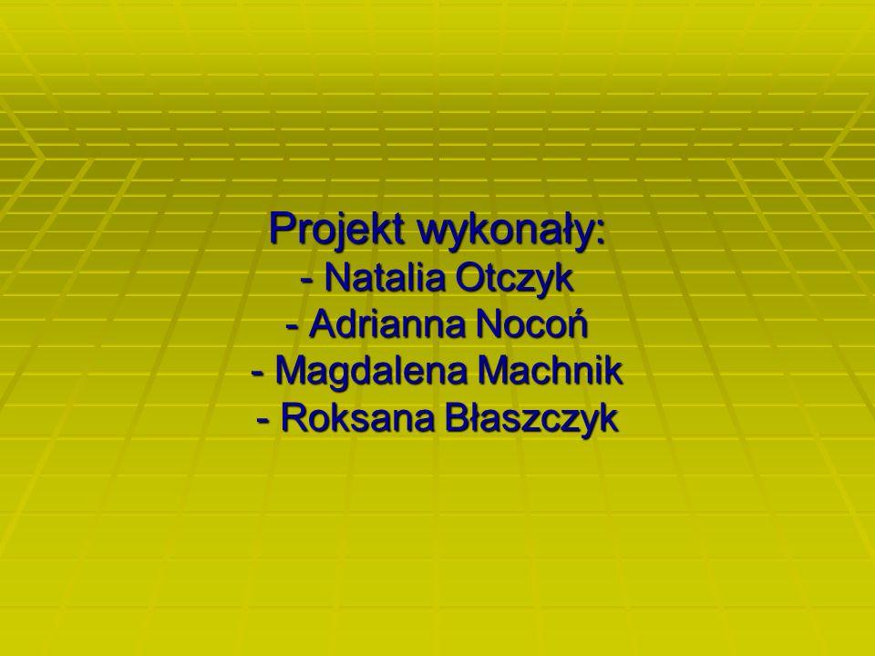 Projekt wykonały: - Natalia Otczyk - Adrianna Nocoń - Magdalena Machnik - Roksana Błaszczyk