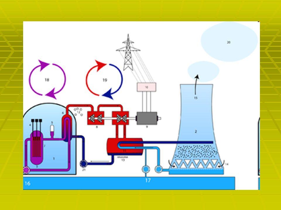 Opis działania elektrowni W reaktorze jądrowym w wyniku reakcji rozszczepienia jąder atomowych wydzielają się duże ilości ciepła, które jest odbierane przez czynnik roboczy.