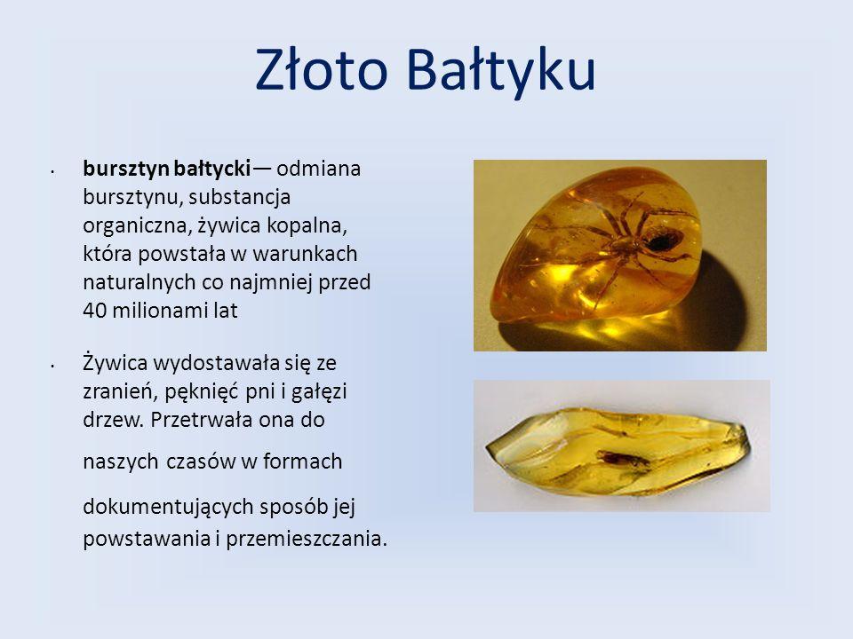 Złoto Bałtyku bursztyn bałtycki— odmiana bursztynu, substancja organiczna, żywica kopalna, która powstała w warunkach naturalnych co najmniej przed 40