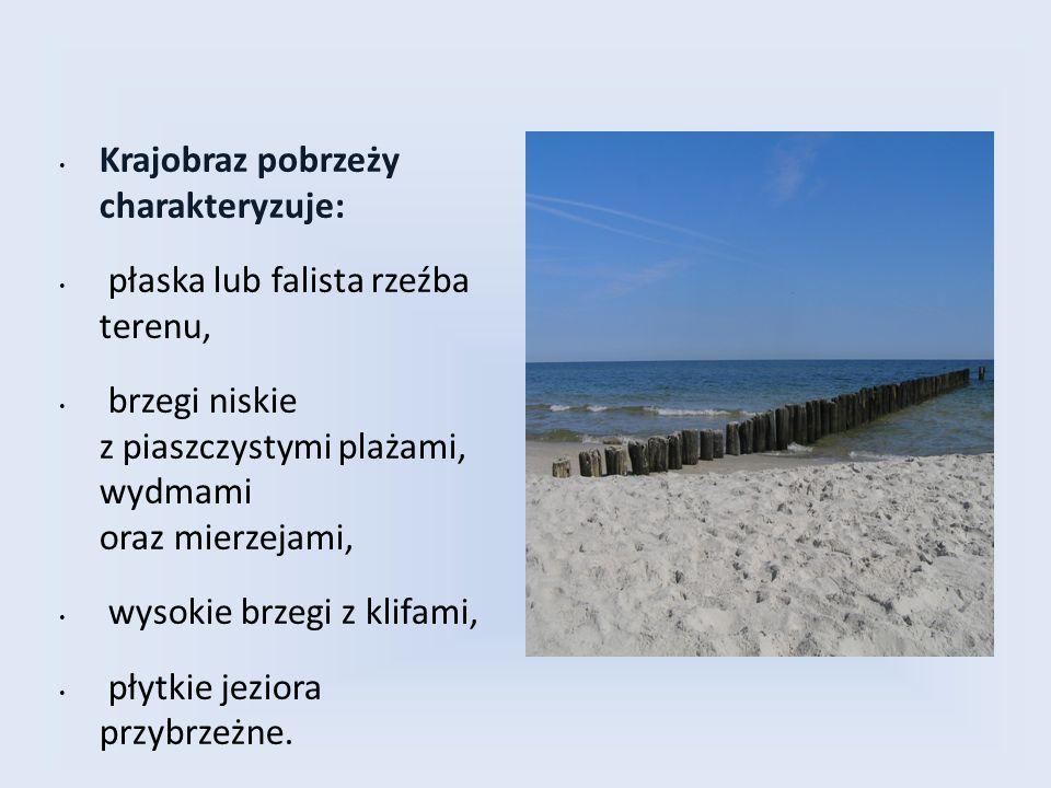 Krajobraz pobrzeży charakteryzuje: płaska lub falista rzeźba terenu, brzegi niskie z piaszczystymi plażami, wydmami oraz mierzejami, wysokie brzegi z