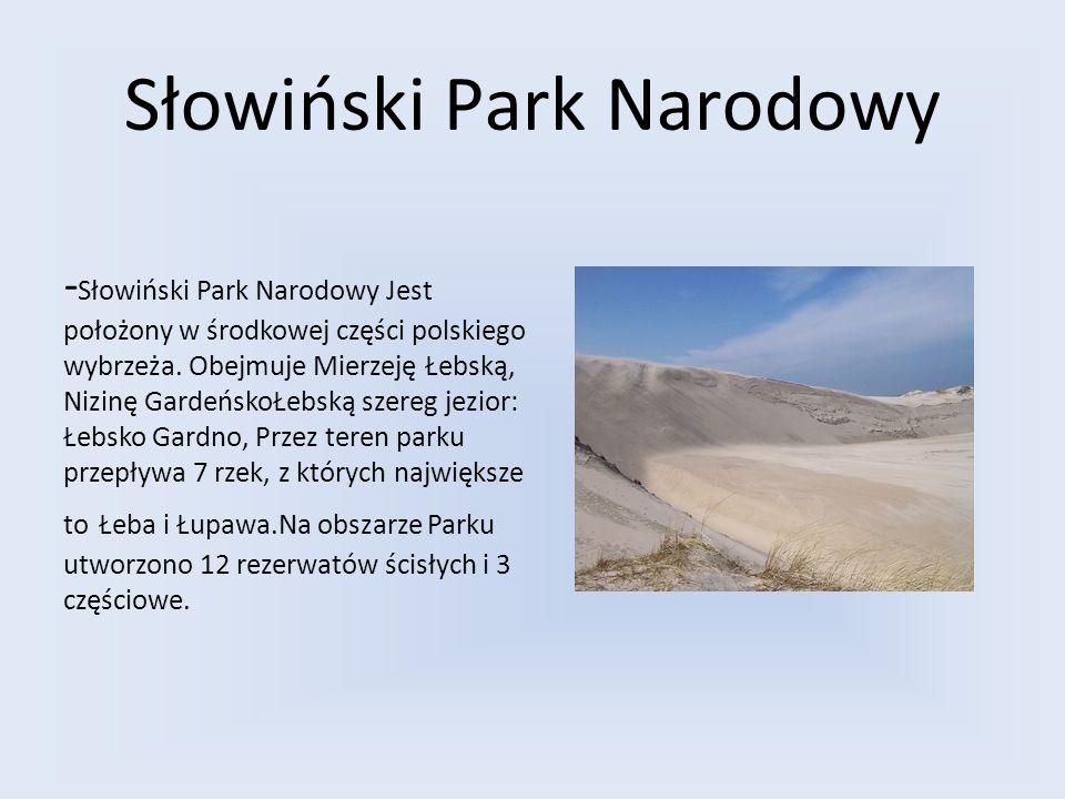 Słowiński Park Narodowy - Słowiński Park Narodowy Jest położony w środkowej części polskiego wybrzeża. Obejmuje Mierzeję Łebską, Nizinę GardeńskoŁebsk