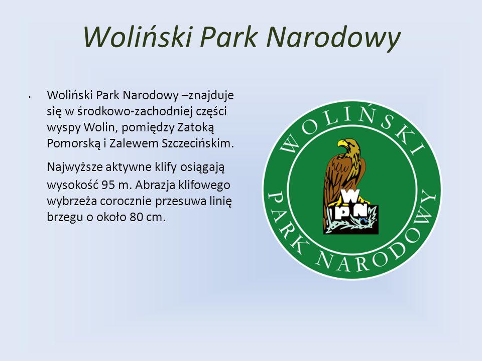 Żuławy Wiślane Żuławy Wiślane wchodzą w skład Pobrzeża Gdańskiego Obejmują rozległą równinę deltową Wisły przypominającą w ogólnym zarysie kształt odwróconego trójkąta, którego wierzchołek znajduje się w rozwidleniu Wisły podstawa wyznaczona jest przez Mierzeję Wiślaną.