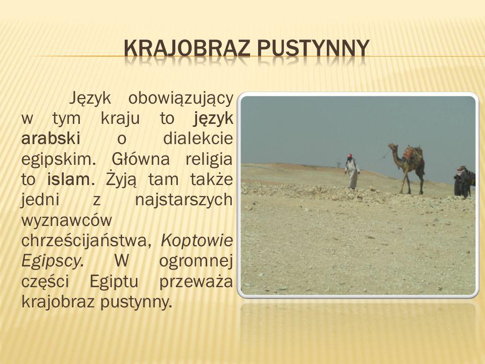 Język obowiązujący w tym kraju to język arabski o dialekcie egipskim.