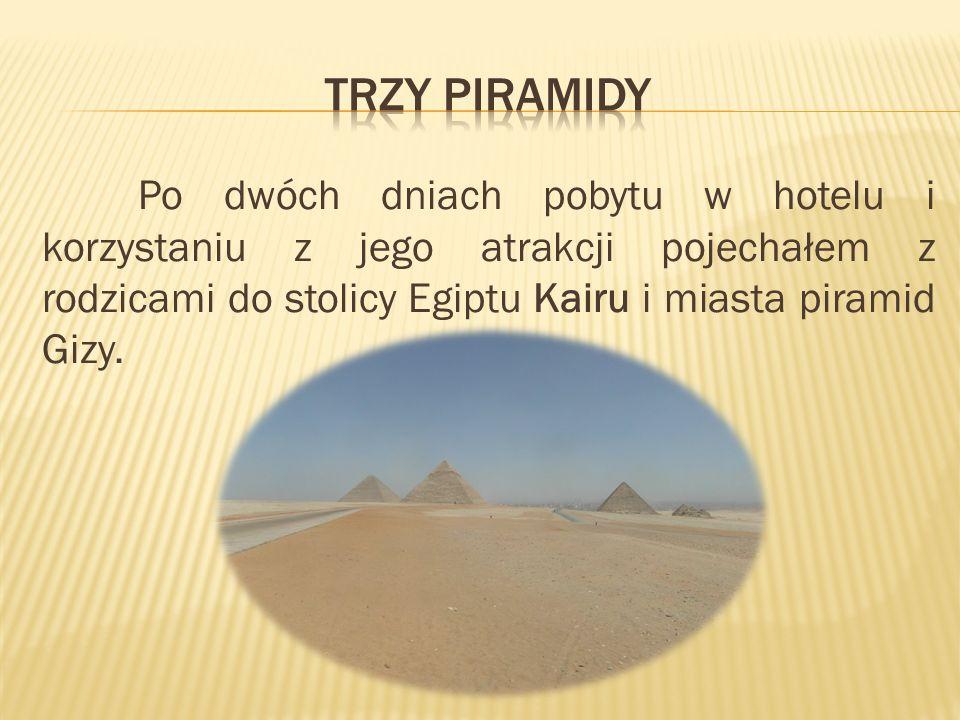 Po dwóch dniach pobytu w hotelu i korzystaniu z jego atrakcji pojechałem z rodzicami do stolicy Egiptu Kairu i miasta piramid Gizy.