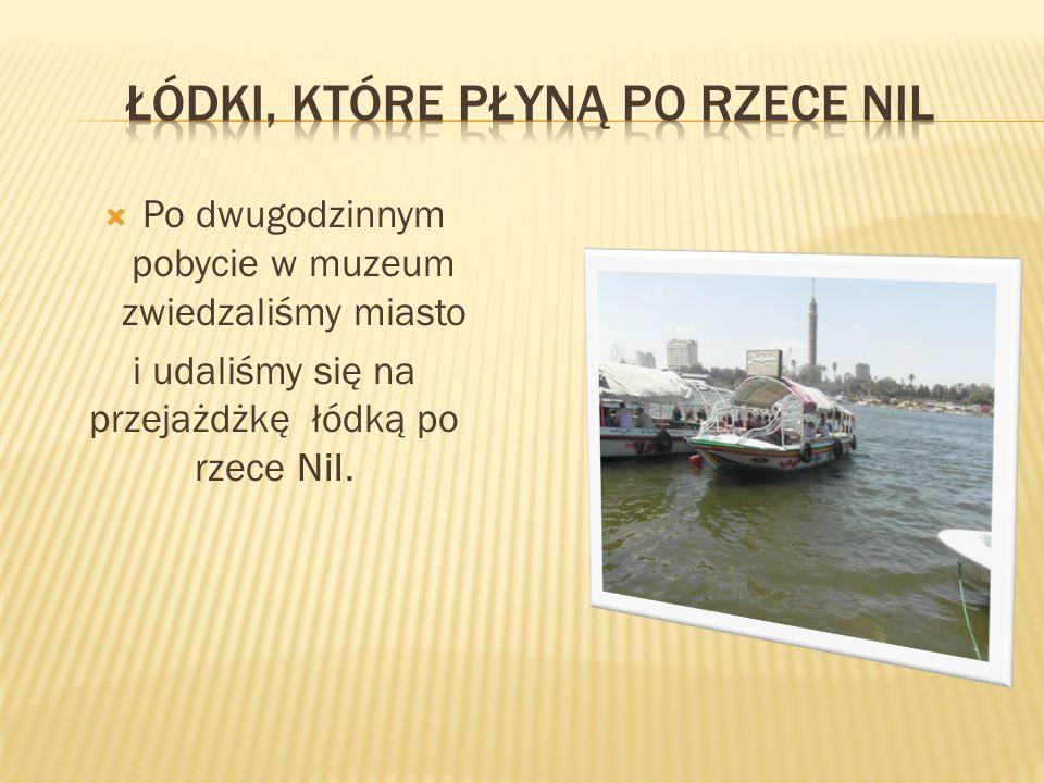 Po dwugodzinnym pobycie w muzeum zwiedzaliśmy miasto i udaliśmy się na przejażdżkę łódką po rzece Nil.