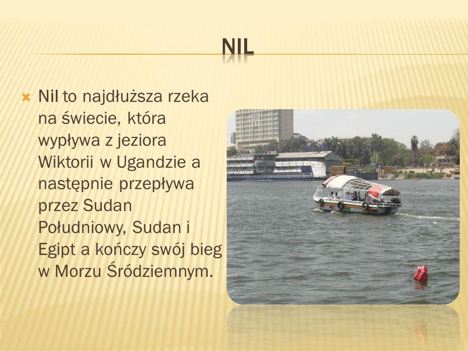  Nil to najdłuższa rzeka na świecie, która wypływa z jeziora Wiktorii w Ugandzie a następnie przepływa przez Sudan Południowy, Sudan i Egipt a kończy swój bieg w Morzu Śródziemnym.