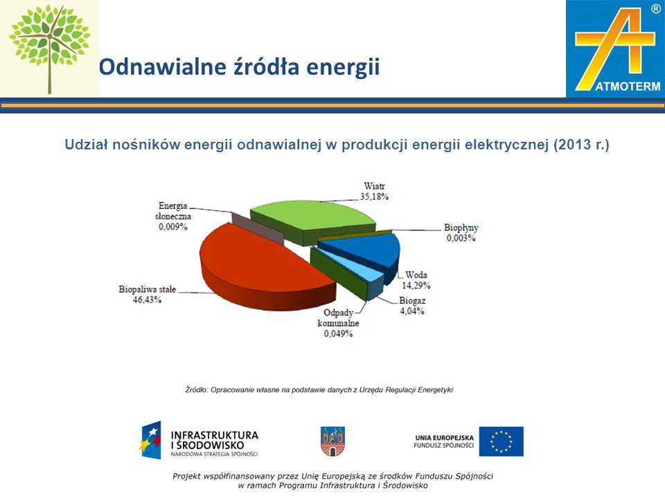 Odnawialne źródła energii Udział nośników energii odnawialnej w produkcji energii elektrycznej (2013 r.)