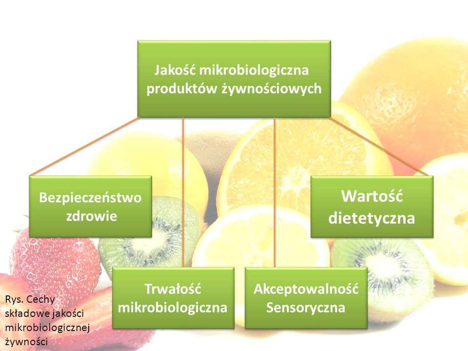 Jakość mikrobiologiczna produktów żywnościowych Jakość mikrobiologiczna produktów żywnościowych Wartość dietetyczna Wartość dietetyczna Akceptowalność Sensoryczna Akceptowalność Sensoryczna Bezpieczeństwo zdrowie Bezpieczeństwo zdrowie Trwałość mikrobiologiczna Trwałość mikrobiologiczna Rys.