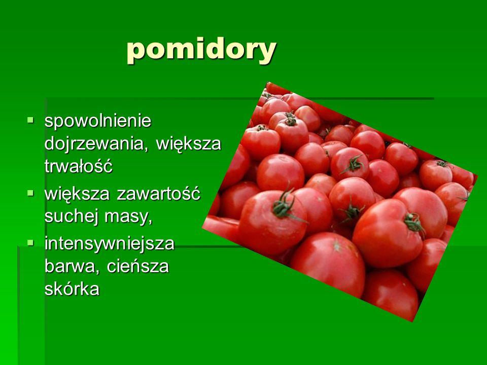 pomidory  spowolnienie dojrzewania, większa trwałość  większa zawartość suchej masy,  intensywniejsza barwa, cieńsza skórka