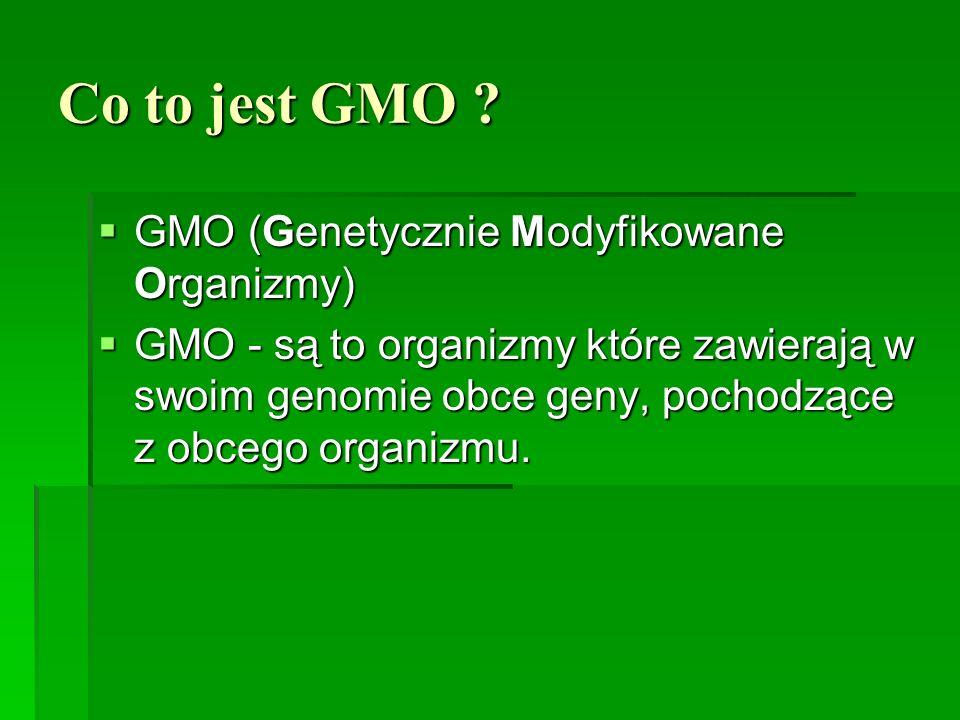 Co to jest GMO ?  GMO (Genetycznie Modyfikowane Organizmy)  GMO - są to organizmy które zawierają w swoim genomie obce geny, pochodzące z obcego org