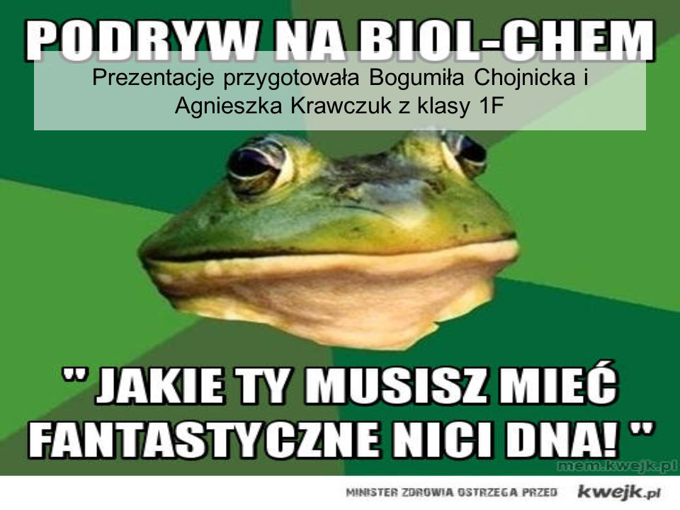 Prezentacje przygotowała Bogumiła Chojnicka i Agnieszka Krawczuk z klasy 1F
