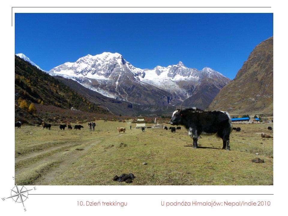 U podnóża Himalajów: Nepal/Indie 201010. Dzień trekkingu