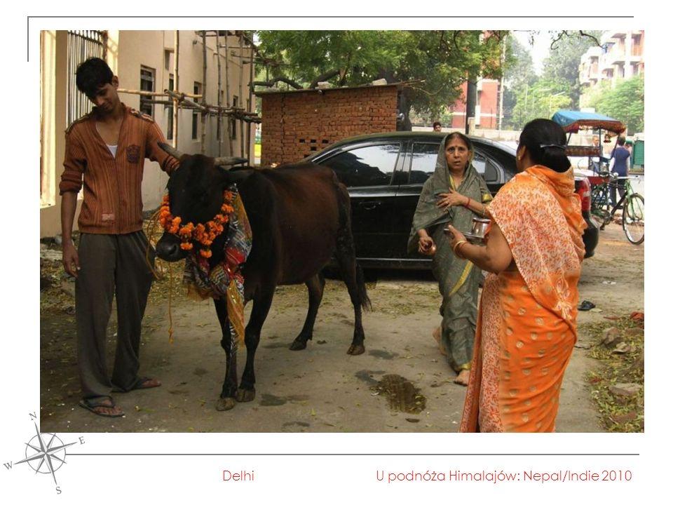 U podnóża Himalajów: Nepal/Indie 2010Delhi
