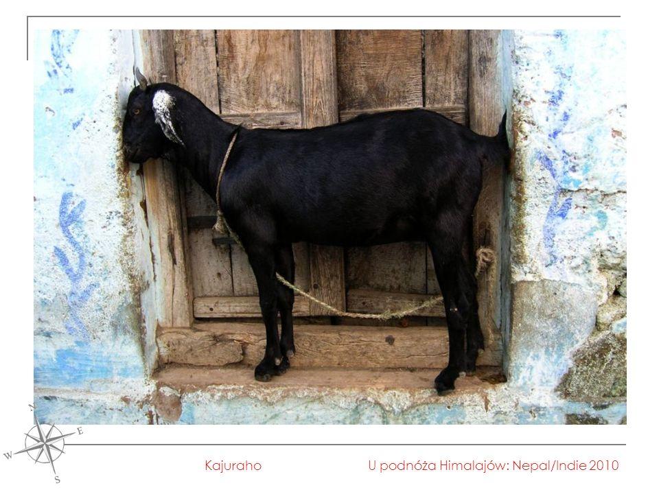 U podnóża Himalajów: Nepal/Indie 2010Kajuraho