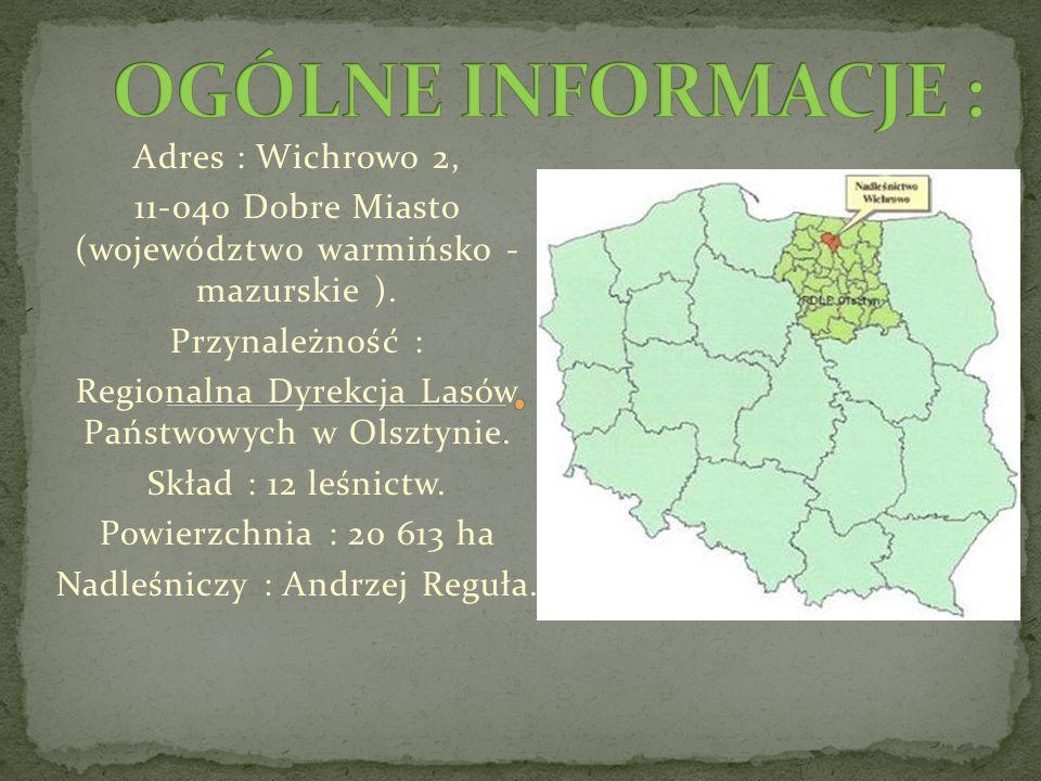 Adres : Wichrowo 2, 11-040 Dobre Miasto (województwo warmińsko - mazurskie ).