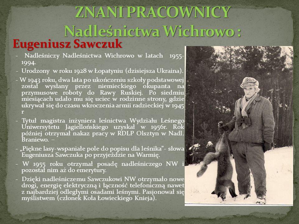 Eugeniusz Sawczuk - Nadleśniczy Nadleśnictwa Wichrowo w latach 1955- 1994.