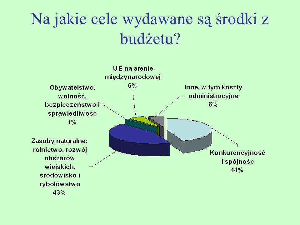 Na jakie cele wydawane są środki z budżetu?
