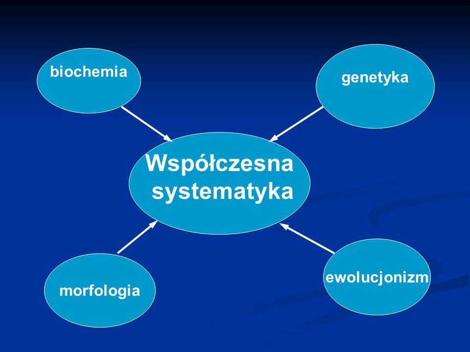biochemia genetyka morfologia ewolucjonizm Współczesna systematyka