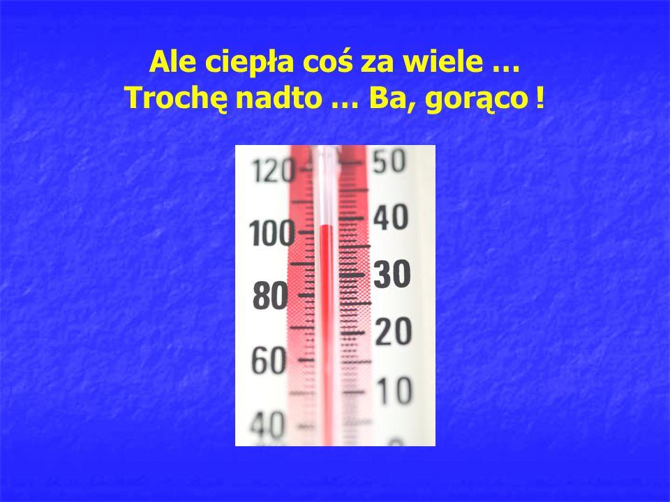 Ale ciepła coś za wiele … Trochę nadto … Ba, gorąco !