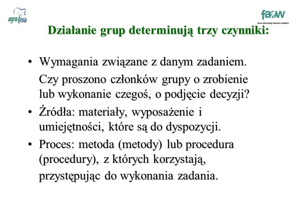 Działanie grup determinują trzy czynniki: Wymagania związane z danym zadaniem.Wymagania związane z danym zadaniem.
