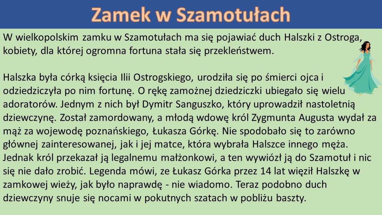 W wielkopolskim zamku w Szamotułach ma się pojawiać duch Halszki z Ostroga, kobiety, dla której ogromna fortuna stała się przekleństwem.