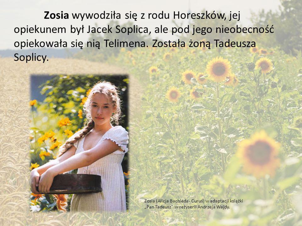 """W powieści Adama Mickiewicza """"Pan Tadeusz, czyli ostatni zajazd na Litwie. występuje wiele postaci, kobiety stanowią jednak niewielką ich część."""