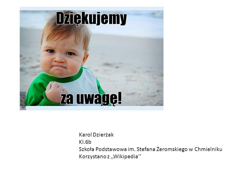 Karol Dzierżak Kl.6b Szkoła Podstawowa im.