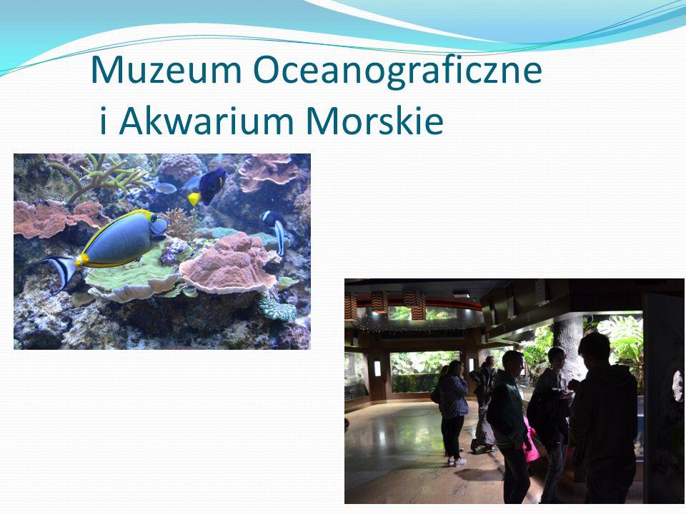 Muzeum Oceanograficzne i Akwarium Morskie
