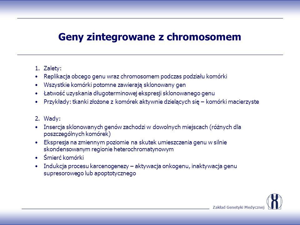Zakład Genetyki Medycznej Geny zintegrowane z chromosomem 1.Zalety: Replikacja obcego genu wraz chromosomem podczas podziału komórki Wszystkie komórki