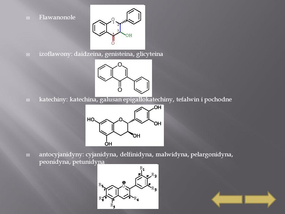  Flawanonole  izoflawony: daidzeina, genisteina, glicyteina  katechiny: katechina, galusan epigallokatechiny, tefalwin i pochodne  antocyjanidyny: cyjanidyna, delfinidyna, malwidyna, pelargonidyna, peonidyna, petunidyna