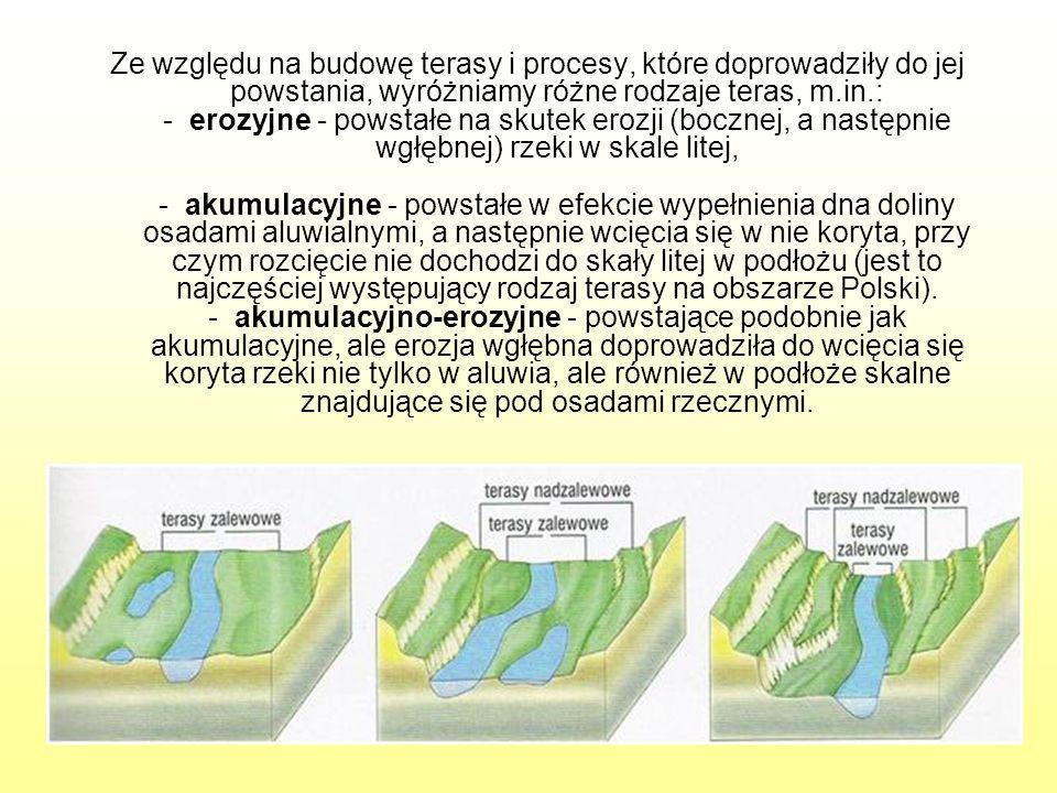 Ze względu na budowę terasy i procesy, które doprowadziły do jej powstania, wyróżniamy różne rodzaje teras, m.in.: - erozyjne - powstałe na skutek ero