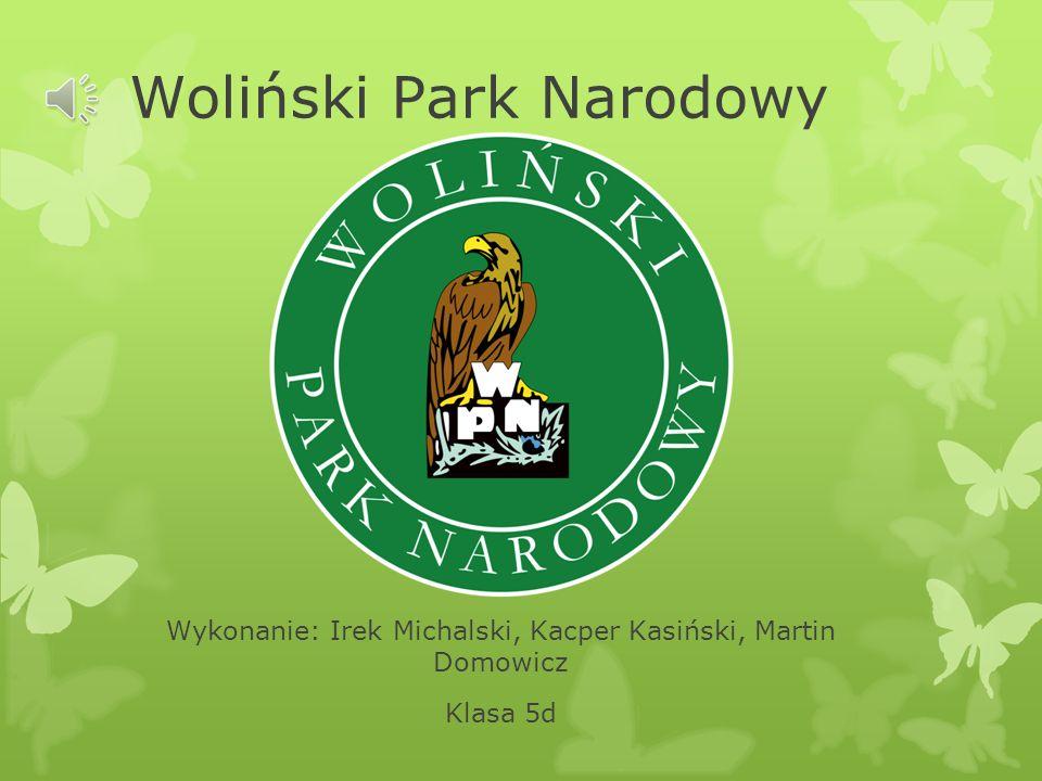 Woliński Park Narodowy Wykonanie: Irek Michalski, Kacper Kasiński, Martin Domowicz Klasa 5d