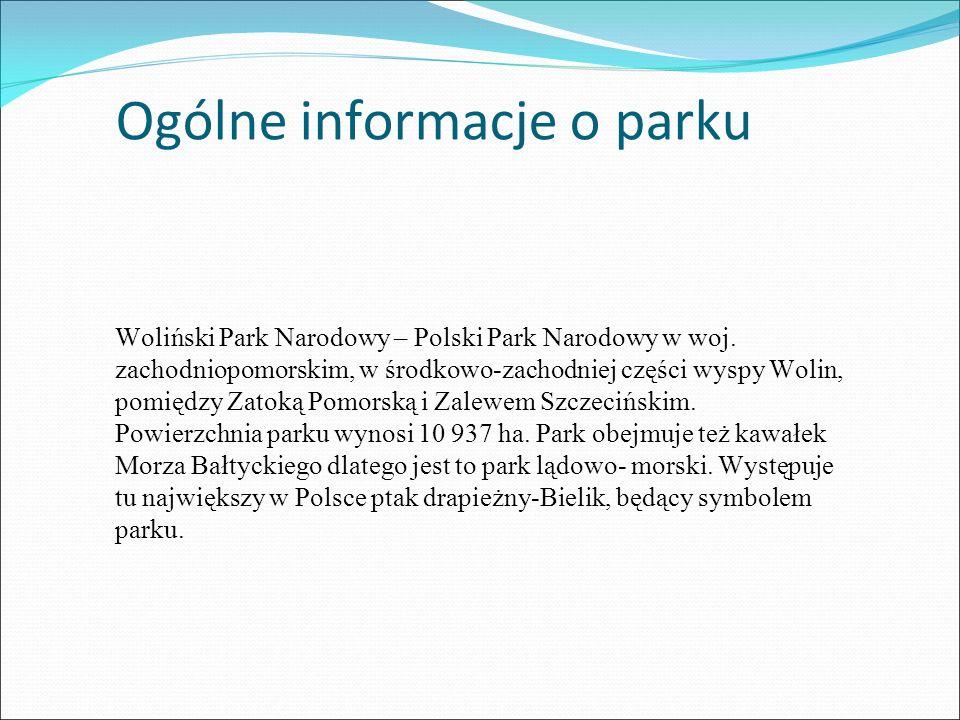 Ogólne informacje o parku Woliński Park Narodowy – Polski Park Narodowy w woj.