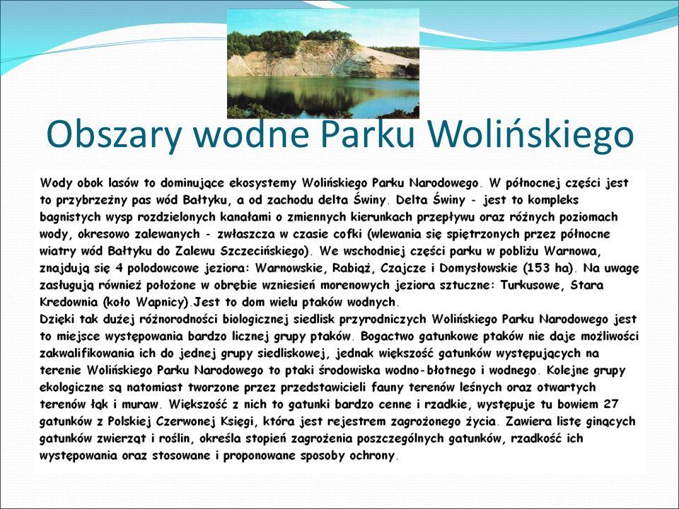 Obszary wodne Parku Wolińskiego