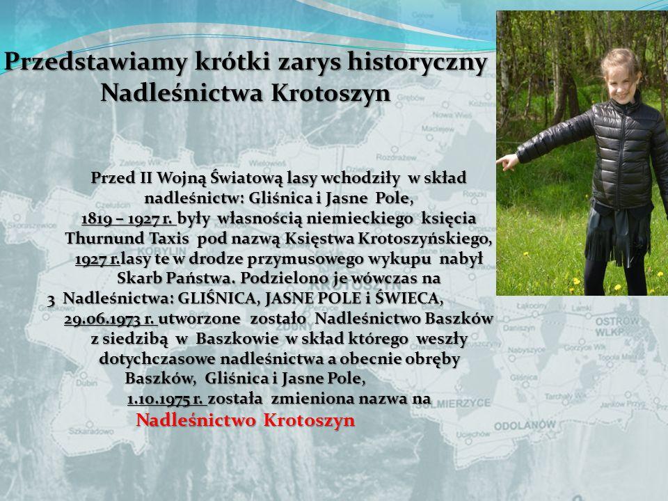 Przedstawiamy krótki zarys historyczny Nadleśnictwa Krotoszyn Przed II Wojną Światową lasy wchodziły w skład nadleśnictw: Gliśnica i Jasne Pole, 1819