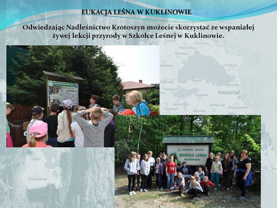 EUKACJA LEŚNA W KUKLINOWIE Odwiedzając Nadleśnictwo Krotoszyn możecie skorzystać ze wspaniałej żywej lekcji przyrody w Szkółce Leśnej w Kuklinowie.
