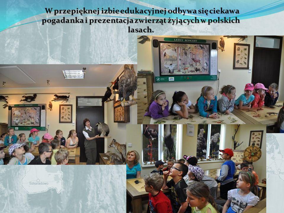 W przepięknej izbie edukacyjnej odbywa się ciekawa pogadanka i prezentacja zwierząt żyjących w polskich lasach.
