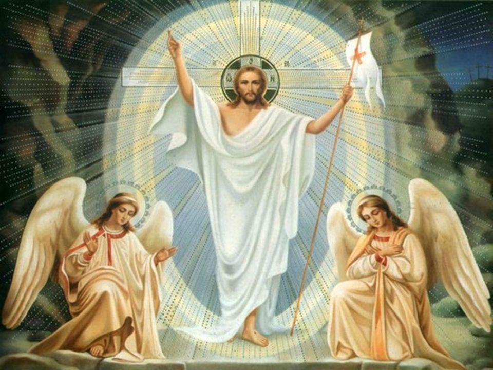 W tym szczególnym czasie, gdy z wielką radością oczekujemy na Święta Paschalne oraz upragnioną kanonizację Jana Pawła II