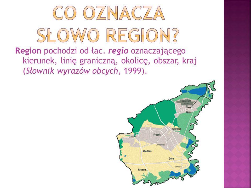 Region pochodzi od łac. regio oznaczającego kierunek, linię graniczną, okolicę, obszar, kraj (Słownik wyrazów obcych, 1999).