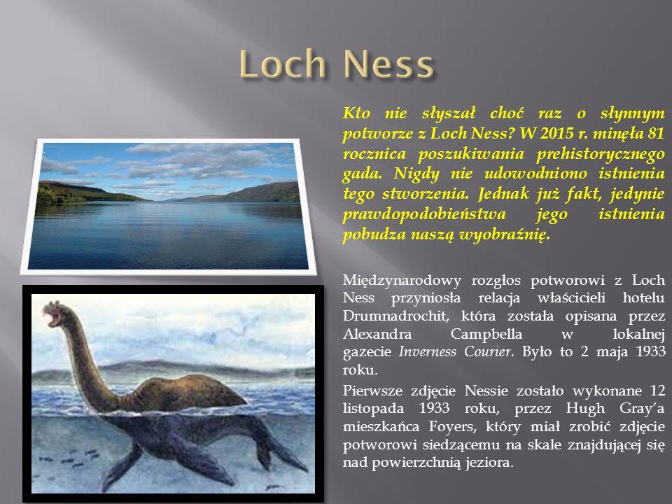 Kto nie słyszał choć raz o słynnym potworze z Loch Ness.