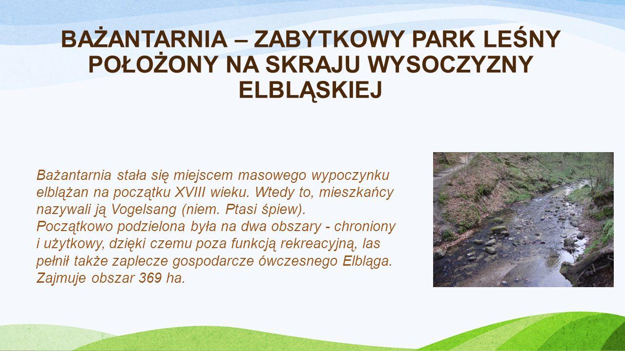 NADLEŚNICTWO ELBLĄG Lasy Nadleśnictwa Elbląg położone są w północnej Polsce, w trzech niezwykle różniących się od siebie regionach przyrodniczych i geograficznych: Mierzeja Wiślana, Żuławy Wiślane, Wzniesienie Elbląskie zwane Garbem Elbląskim.